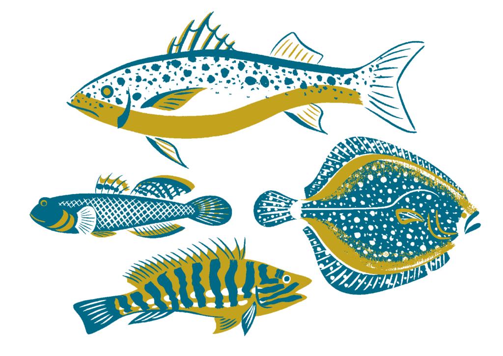 britishfish