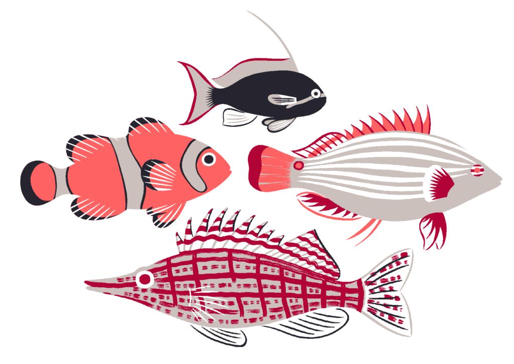 tropicalfishfive