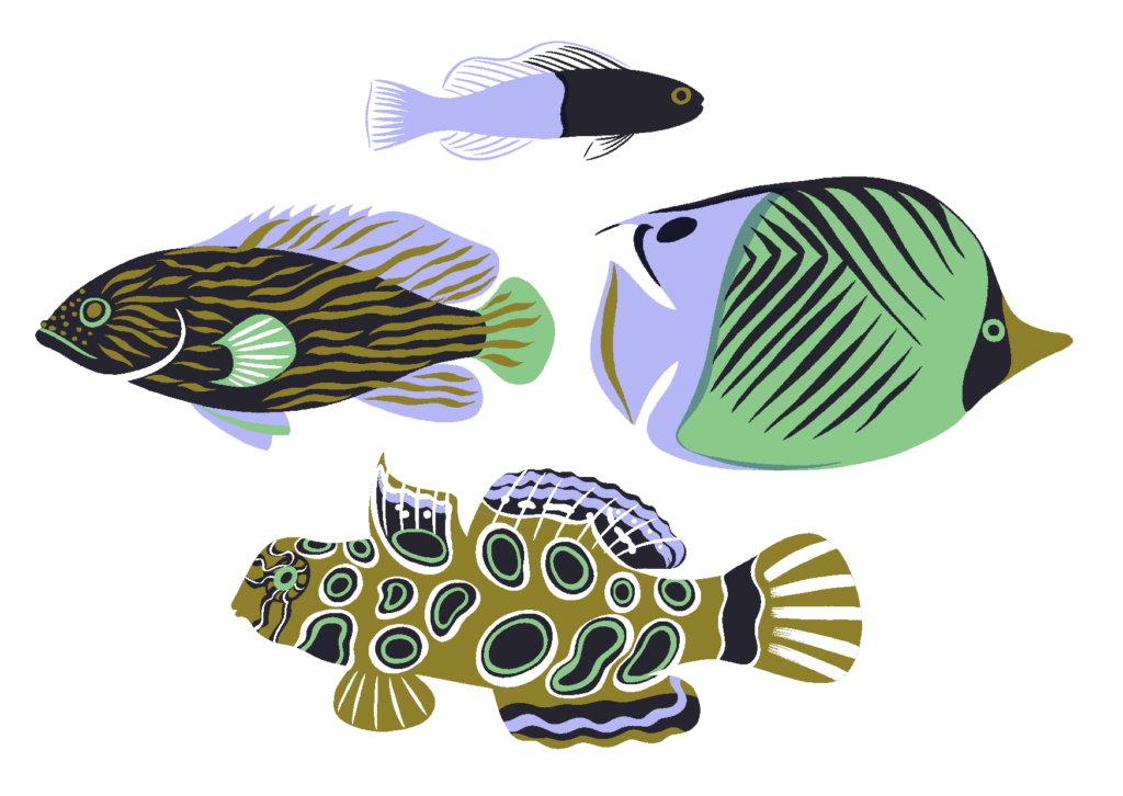 tropicalfishfour