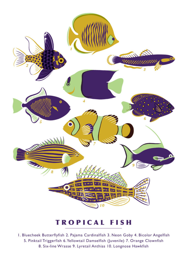 tropicalfishprint_greenandpurple