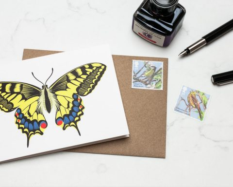 A swallowtail butterfly greeting card