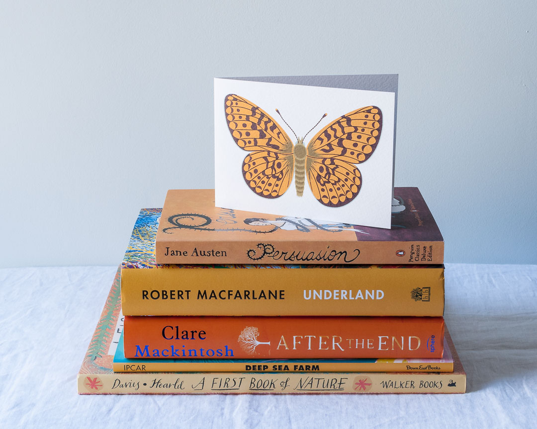 An illustrated greeting card of a butterfly