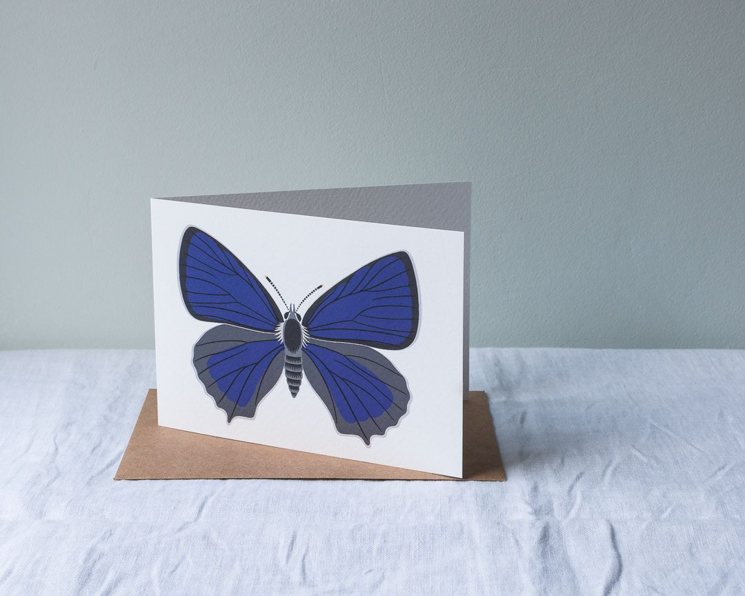 An illustrated greeting card of a purple butterfly