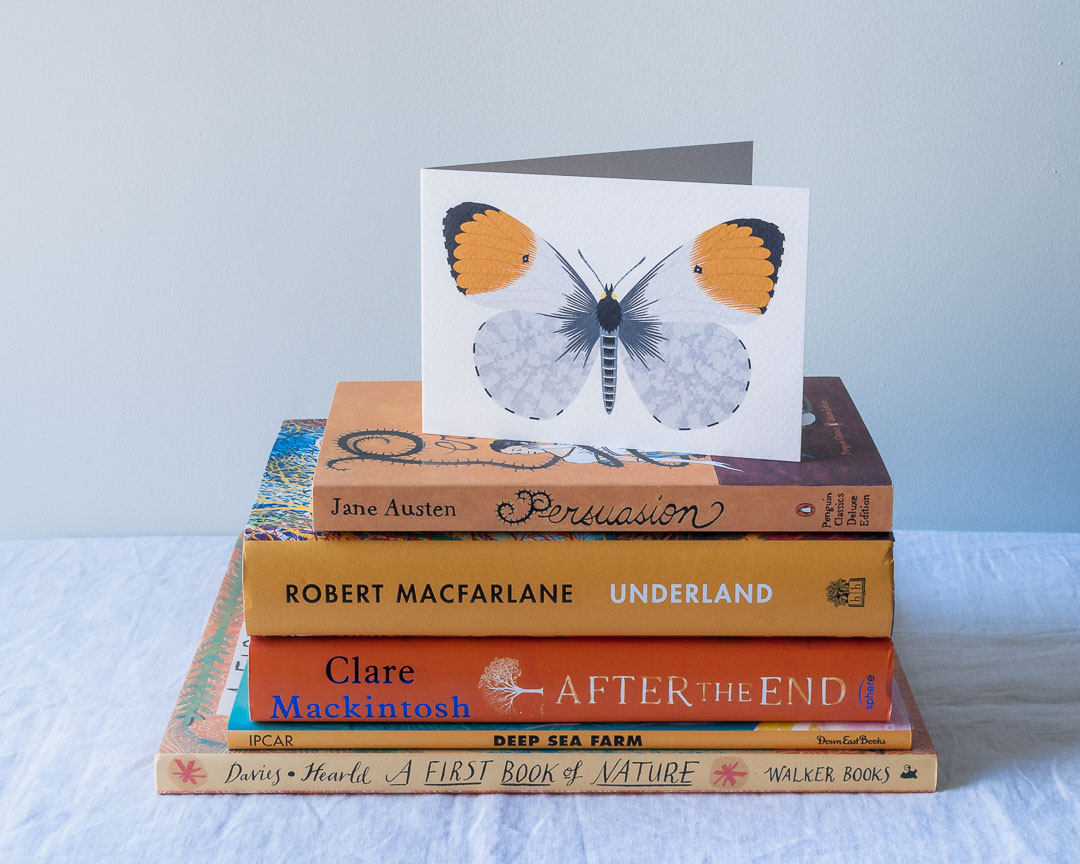 Orange-tip butterfly greeting card