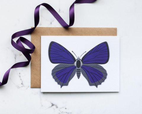 A greeting card illustration of a purple butterfly.