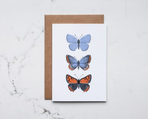 A greeting card illustration of butterflies